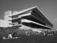 京都競馬場 特徴