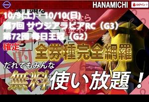 HANAMICHI 評価